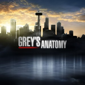 Grey's Anatomy End Games? Cast Weigh In On Character Fates